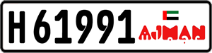 61991