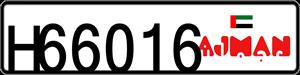 66016
