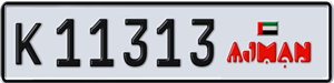 11313