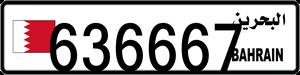 636667