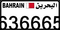 636665
