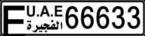 66633