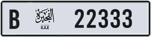 22333