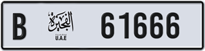 61666