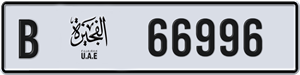 66996