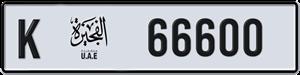 66600