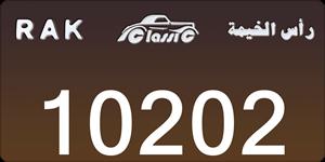 10202
