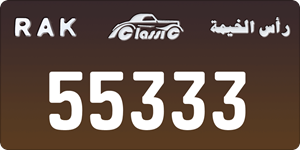 55333