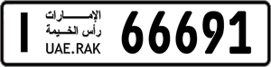 66691