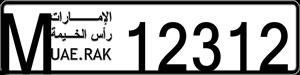 12312