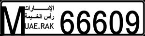 66609