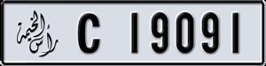 19091