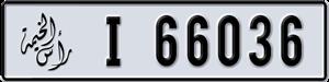66036