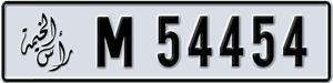 54454