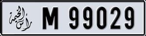 99029