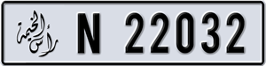 22032