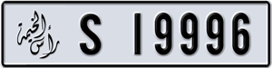 19996