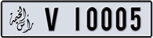 10005