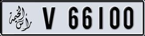 66100