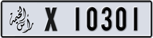 10301