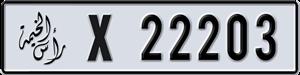 22203