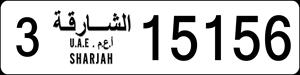 15156