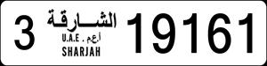 19161