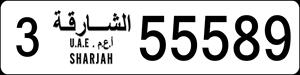 55589