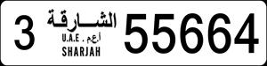 55664