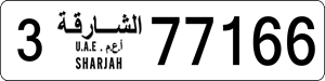 77166