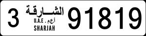 91819
