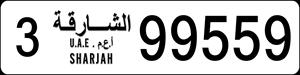 99559