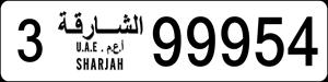 99954