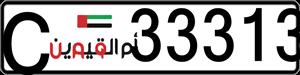 33313