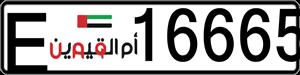 16665