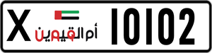 10102