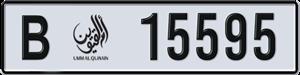 15595