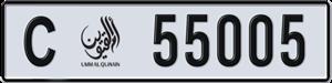 55005