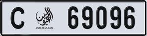 69096