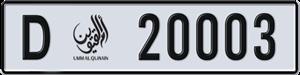 20003