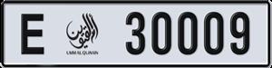 30009