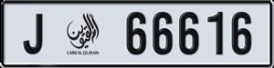 66616